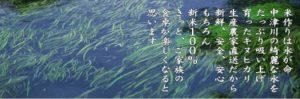 中津川の綺麗な水をたっぷり吸い上げ育ったキヌヒカリは、新鮮・安全・安心。もちろん新米100%。きっと、ご家族の食卓が楽しくなると思います。