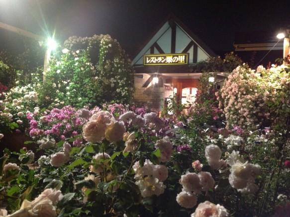 バラのライトアップの名所