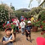 オールドローズをメインに植栽し、キッズガーデンと題し、子ども達の学習の場も提供。 古き良きバラの知る機会を創出。