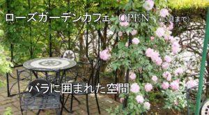 ローズガーデンカフェオープン(12月まで)