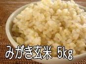 栗の里米 みがき玄米 5kg 2,500円