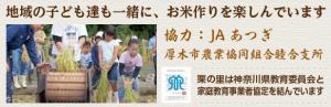 子ども達も一緒に米作りを楽しんでいます