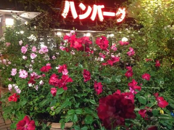 幻想的なバラのライトアップもお楽しみ下さい♪