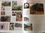 春:神奈川のバラの名所として紹介されました!