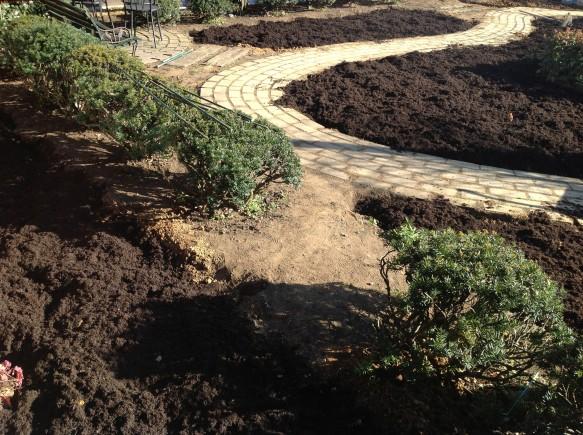 赤土や堆肥等を入れる作業を実施しました!
